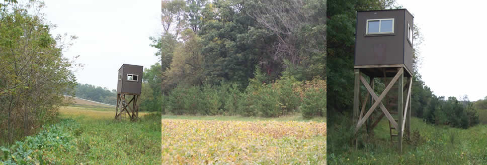 Fillmore County 35 Acre Hunting Land